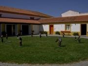 Coudalaria-Alentejo-Portugal (1)