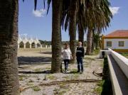 Coudalaria-Alentejo-Portugal (6)